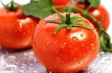 دراسة: الطماطم ترفع خصوبة الرجال بنسبة 40%