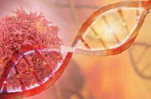اكتشاف جديد يبشِّر بالقضاء على معظم أنواع السرطان