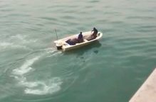 السواحل تتجه لإبعاد الصيادين المخالفين في جون الكويت