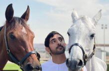 إليك بعض أسماء خيول ولي عهد دبي أحدها «عجايب»