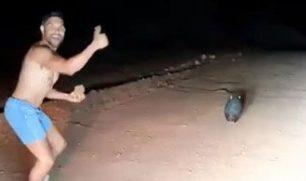 فيديو| غضب يجتاح أستراليا بعد قذف ضابط شرطة لحيوان بالحجارة