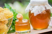 """""""الشبكة الجراحية"""".. عسل النحل في غرفة العمليات لأغرب فائدة طبية"""