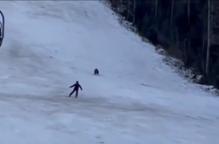شاهد.. حيلة ذكية تنقذ متزلجاً من قبضة دب