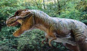 كشف حفري يفك لغز انقراض الديناصورات